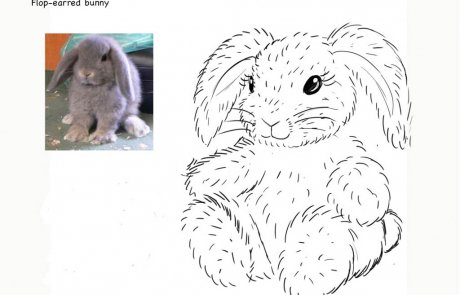 Plush toy Bunny-pencil concept drawing